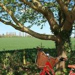Enjoy beautiful views on Oxford's bike tour