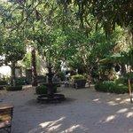 courtyard bungalow 313