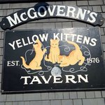 Yellow Kittens