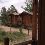 The little cabins: cozy and affordable and CLEAN