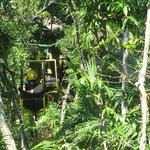 zip bike through the jungle