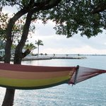 That hammock is calling to me