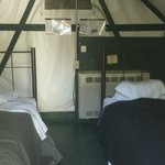 Interior of two bed heated tent