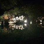Pool reflections at night
