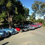 Austin Healy Car Club run 2013