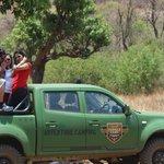 Jungal Safari