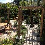 Poinciana restaurant garden terrace