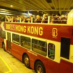 Hong Kong night tour bus