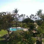 KBH Maui Wing 534
