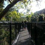 Refreshing walk ;)