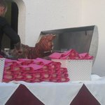 The Hog Roast