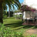 House Garden