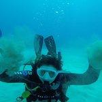 Diving #3