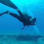 Diving #4
