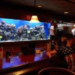 aquarios interno