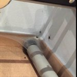 Spiders in gym