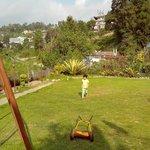 Owners garden