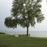 Lawn/water in front of Sandaway. Beautiful Sycamore trees.