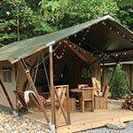 Safari Tent Experience