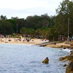 Manly 12
