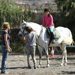 horse riding/lessons los pinos verdes lajares