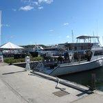 Harbor where boat is docked in the Marina