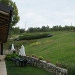 View of hotel & vineyards