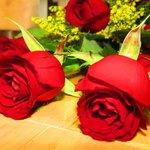 Flores en Belil