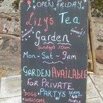 Lily's Tea Garden