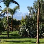 Hotel grounds, Atlas Mountains in the background