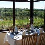 Restaurant overlooking Vineyard & National Park