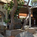 Cafe Del Mar.