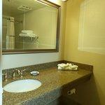 Chaparral Suites -- bath