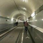 Tunnel itself