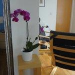 Orquídea en la habitación
