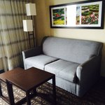 Common room (comfy couch)
