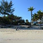 Playa del hotel1
