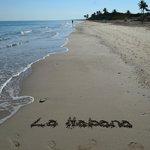 Playa del hotel 5