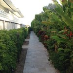 pathway to rooms
