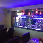 Near fish tank