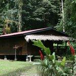 Amapola House
