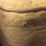 damaged bedding