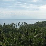 View of Ocean and garden