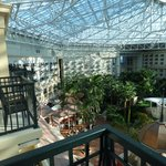 Atrium Room View