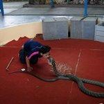 Phuket Snake show 10