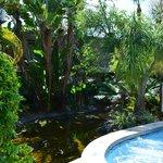 Giardino del Best Western Inn Naples
