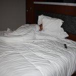cama de la habitacion