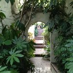 Chateau beautiful gardens