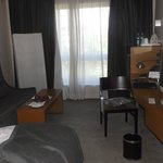 Room comes with sofa, desk and fridge