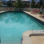 Sparkling clean pool and surrounding area